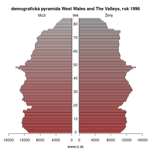 demograficky strom UKL1 West Wales and The Valleys 1996 demografická pyramída