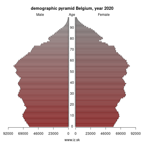 demographic pyramid Belgium,