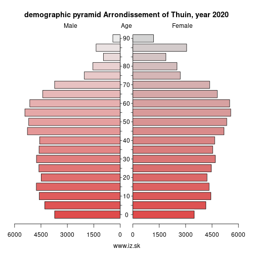 demographic pyramid BE326 Arrondissement of Thuin