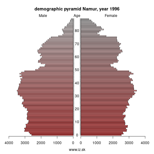 demographic pyramid BE35 1996 Namur