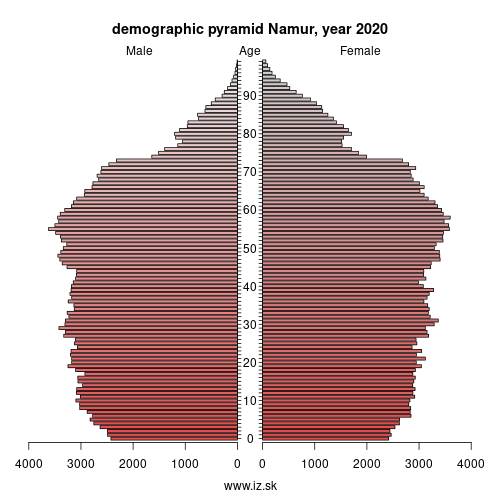 demographic pyramid BE35 Namur