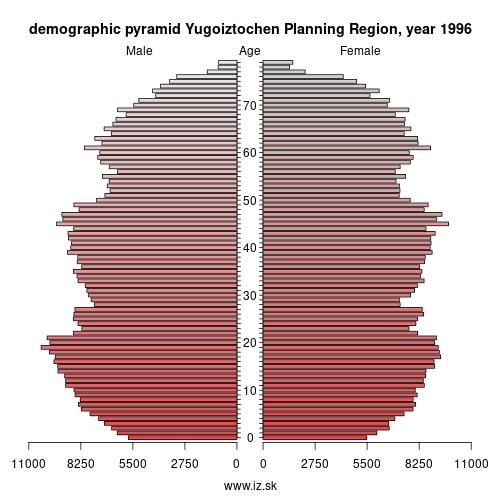 demographic pyramid BG34 1996 Югоизточен