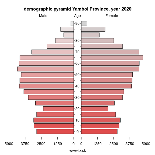 demographic pyramid BG343 Ямбол