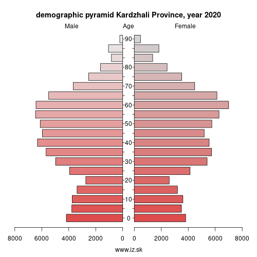 demographic pyramid BG425 Кърджали