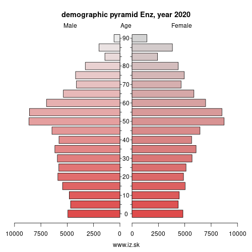 demographic pyramid DE12B Enz