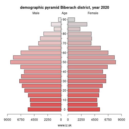 demographic pyramid DE146 Biberach district