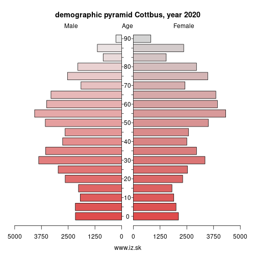 demographic pyramid DE402 Cottbus