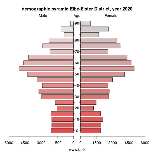 demographic pyramid DE407 Elbe-Elster District