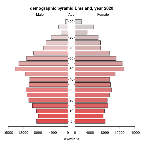 demographic pyramid DE949 Emsland