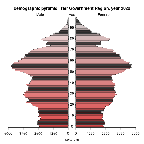 demographic pyramid Trier,
