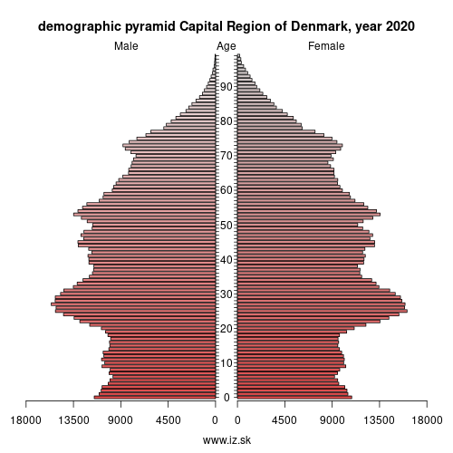 demographic pyramid DK01 Capital Region of Denmark