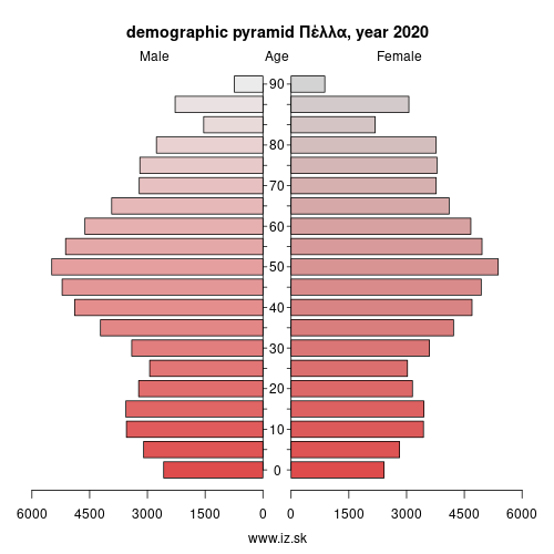demographic pyramid EL524 Πέλλα