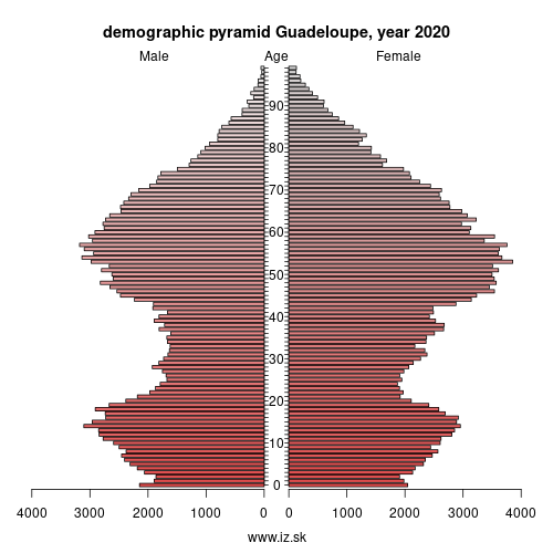 demographic pyramid FRY1 Guadeloupe