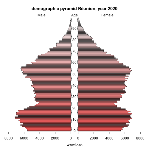 demographic pyramid FRY4 La Réunion