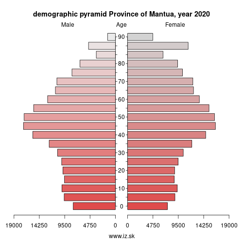 demographic pyramid ITC4B Province of Mantua
