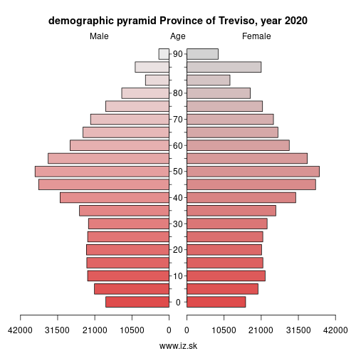 demographic pyramid ITH34 Province of Treviso