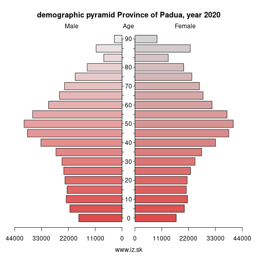 demographic pyramid ITH36 Province of Padua