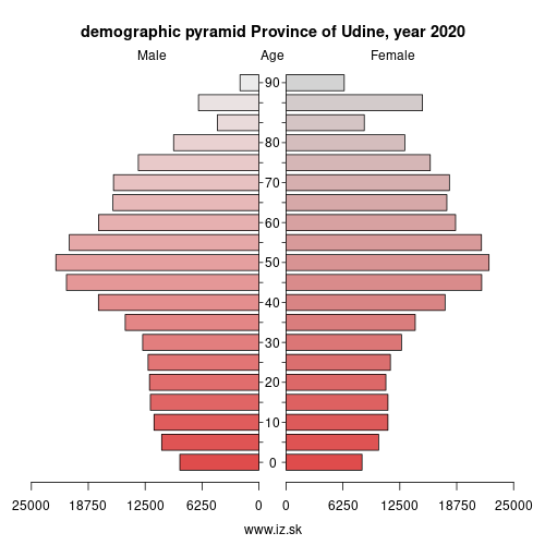 demographic pyramid ITH42 Province of Udine