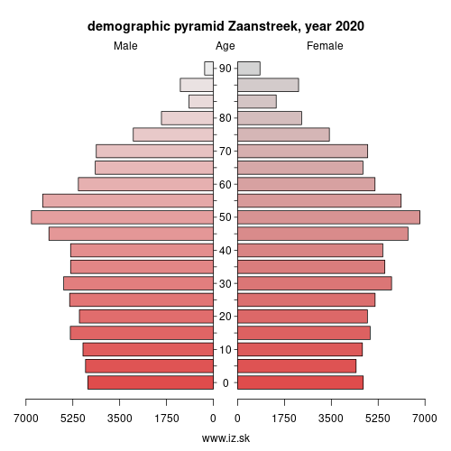 demographic pyramid NL325 Zaanstreek