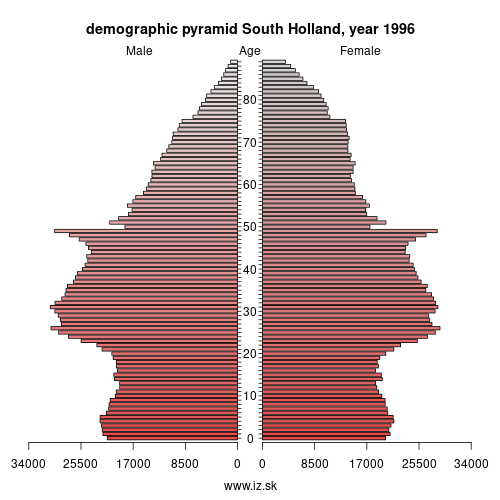 demographic pyramid NL33 1996 South Holland