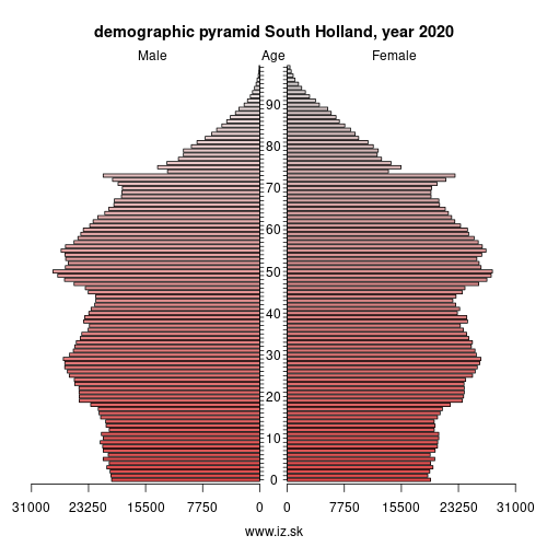 demographic pyramid NL33 South Holland