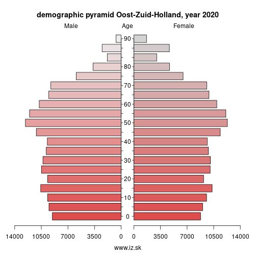 demographic pyramid NL33B Oost-Zuid-Holland