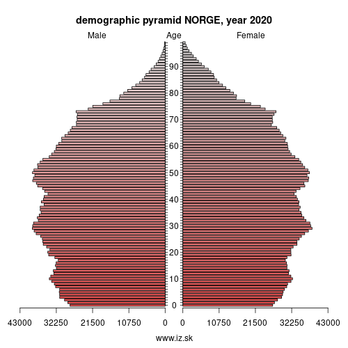 demographic pyramid NO NORGE