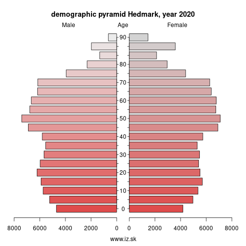 demographic pyramid NO021 Hedmark