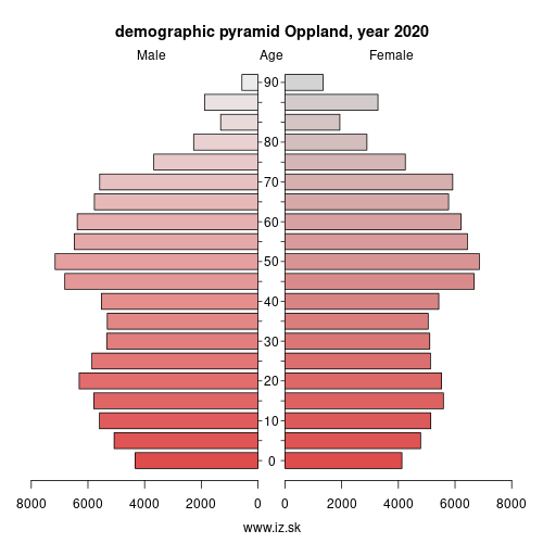 demographic pyramid NO022 Oppland