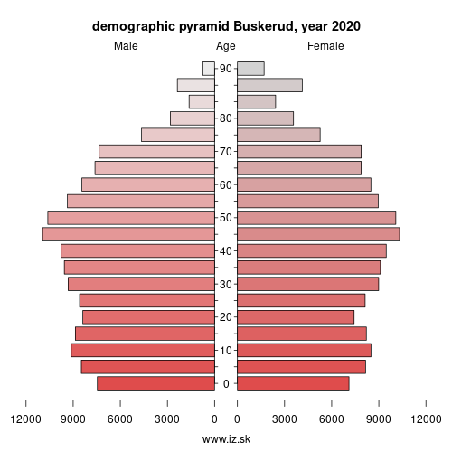 demographic pyramid NO032 Buskerud