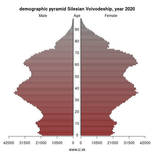 demographic pyramid Slaskie,