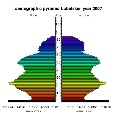 demographic pyramid Lubelskie,