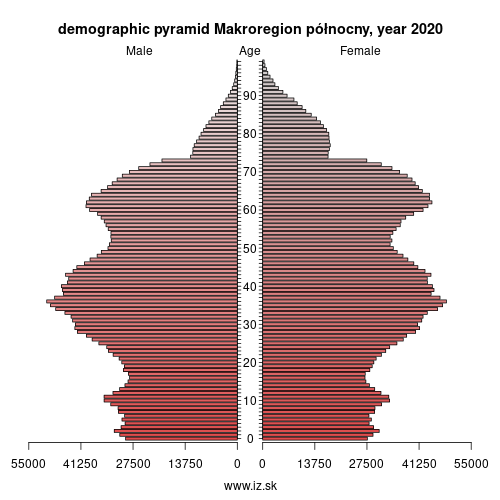 demographic pyramid POLNOCNY,