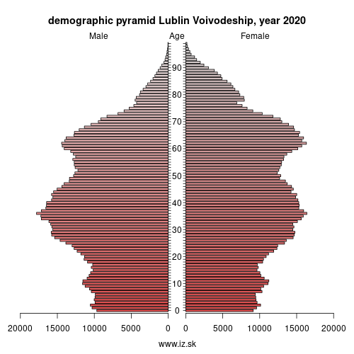 demographic pyramid PL81 Lubelskie