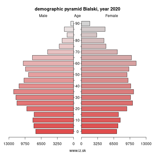demographic pyramid PL811 Bialski