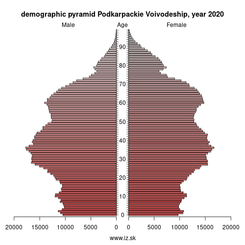 demographic pyramid PL82 Podkarpackie