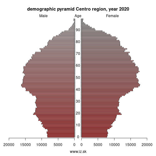 demographic pyramid PT16 Centro Region