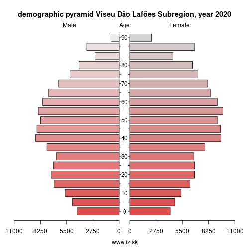 demographic pyramid PT16G Greater Metropolitan Area of Viseu