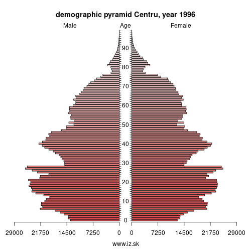 demographic pyramid RO12 1996 Centru