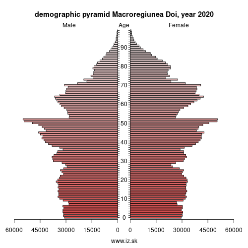 demographic pyramid RO2 MACROREGIUNEA DOI