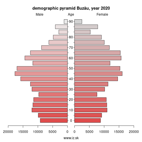 demographic pyramid RO222 Buzău