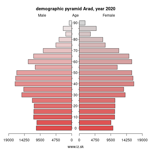 demographic pyramid RO421 Arad