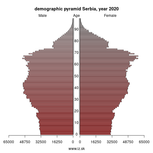 demographic pyramid RS Serbia