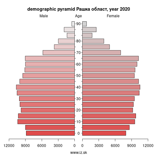 demographic pyramid RS217 Рашка област