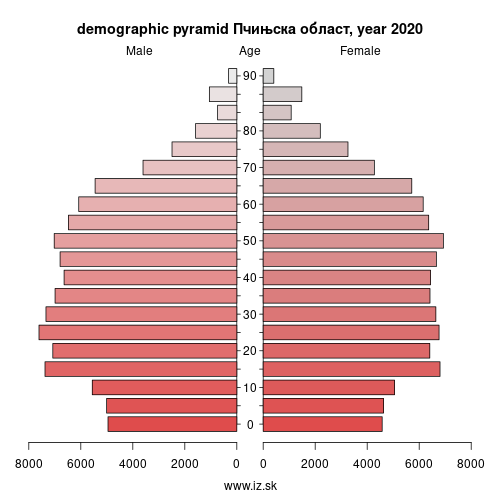 demographic pyramid RS228 Пчињска област