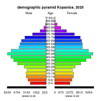 demographic pyramid Kopanice 2025