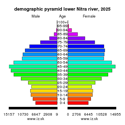 demographic pyramid lower Nitra river 2025