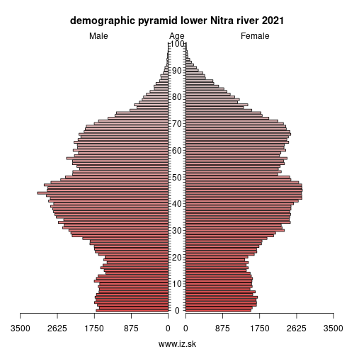 demographic pyramid lower Nitra river 2020