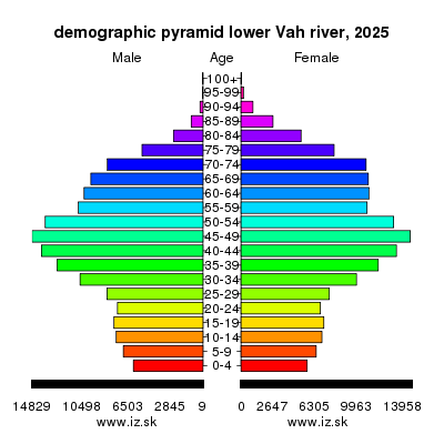 demographic pyramid lower Vah river 2025