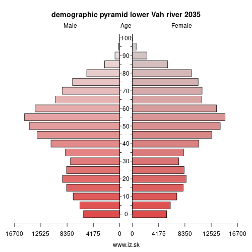 demographic pyramid lower Vah river 2035